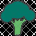 Broccoli Cabbage Cauliflower Icon