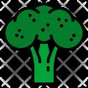 Broccoli Vegetables Healthy Icon