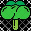 Broccoli Fresh Vegetable Icon