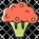 Broccoli Cauliflower Cauliflower Nutrition Icon