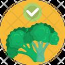 Keto Diet Broccoli Vegetable Icon