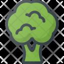 Broccoli Health Food Icon