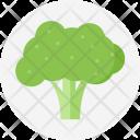 Broccoli Green Plant Icon