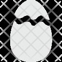 Egg Nature Broken Icon