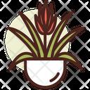 Bromeliad Icon