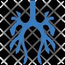 Bronchus Body Bodypart Icon