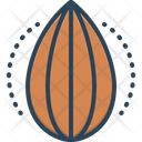 Brown Almond Nut Icon