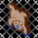 Bear Skin Hunting Icon