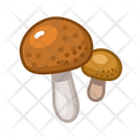 Brown Cap Boletus Icon