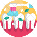 Brushing Teeth Icon