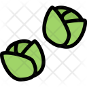 Brussels Sprouts Vegetables Icon