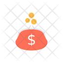 Budget Dollar Bag Icon