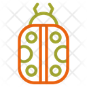 Bug Animal Insect Icon