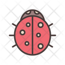 Bug Insect Garden Insect Icon