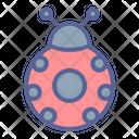 Spring Ladybug Luck Icon