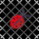 Bug Bedbug Insect Icon
