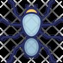 Bug Halloween Insect Icon