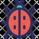 Bug Internet Bug Internet Virus Icon