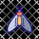 Moth Mole Bug Icon