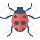 Bug Fly Insect Icon