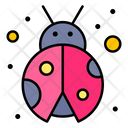Bug Garden Insect Icon