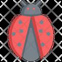 Bug Ladybug Animal Icon