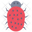 Bug Virus Error Icon