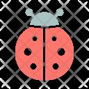 Bug Ladybug Spring Icon