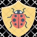 Bug Protection Shield Icon