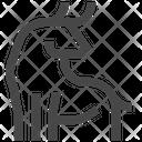 Chinese Zodiac Astrology Animal Icon