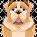 Bull Dog Icon