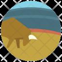 Bull fight Icon
