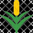 Bull Rush Cattail Icon
