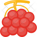 Bunch of Cherries Icon