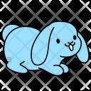 Bunny Flap Rabbit Icon