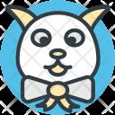 Bunny Rabbit Face Icon