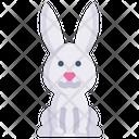 Bunny Rabbit Animal Icon
