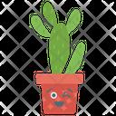 Bunny Ear Cactus Cactus Gift Succulent Plant Icon