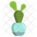 Bunny Ear Cactus Cactus Pot Cactus Plant Icon
