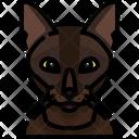 Burmese Cat Cat Face Icon