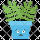 Burro Tail Cactus Sedum Morganianum Succulent Plant Icon