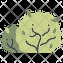Bush Garden Plant Icon