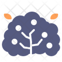 Bush Spring Shrub Icon