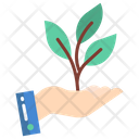 Business Business Growth Growth Icon