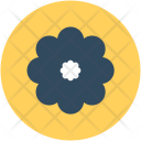 Buttercup Flower Beauty Icon