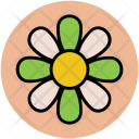 Buttercup Flower Leafs Icon