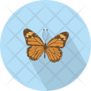 Butterfly Bug Butterflies Icon