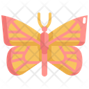 Butterfly Fly Insect Icon