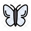 Butterfly Insect Park Icon