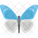 Butterfly Fly Bee Icon